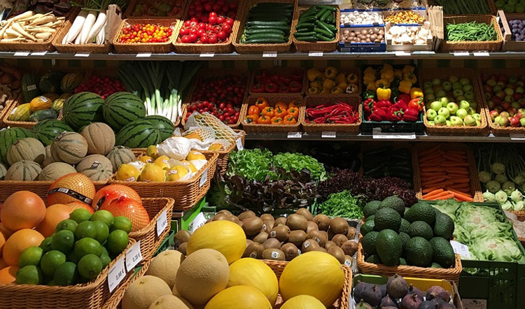 Ahmedabad Leading Suppliers of Quality Fresh Vegetables and Fruits